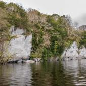 Irland_Killarney_Nationalpark_022