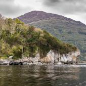 Irland_Killarney_Nationalpark_023