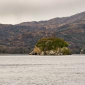 Irland_Killarney_Nationalpark_028