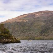 Irland_Killarney_Nationalpark_046