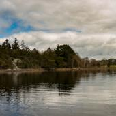Irland_Killarney_Nationalpark_070