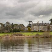 Irland_Killarney_Nationalpark_071