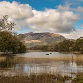 Irland_Killarney_Nationalpark_073